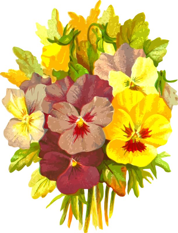 Clipart - Pansies 2