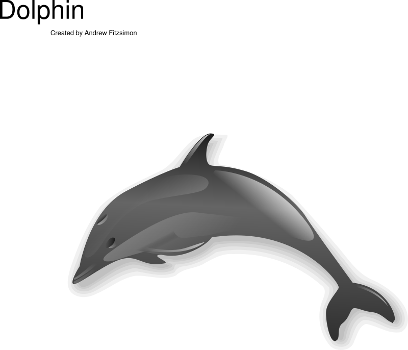 Dolphin by Anonymous