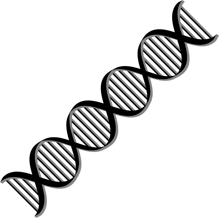 clipart dna helix variation 2 rh openclipart org dna clip art images dna clipart jpg