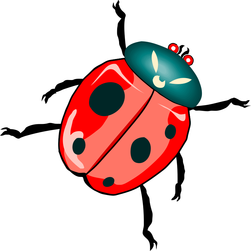 Architetto -- Coccinellona 03 by francesco_rollandin - Ladybug by Francesco 'Architetto' Rollandin.