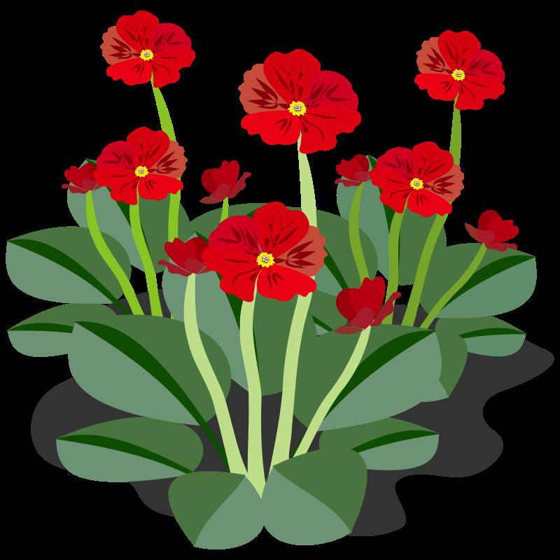 clip art flowers microsoft - photo #34