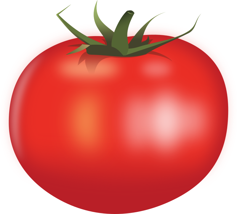 Clipart - Tomato by Rones
