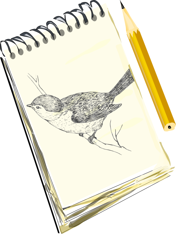 Sketchpad, with drawing of a bird by eady - Pencil and sketchpad, featuring a drawing of a bird.