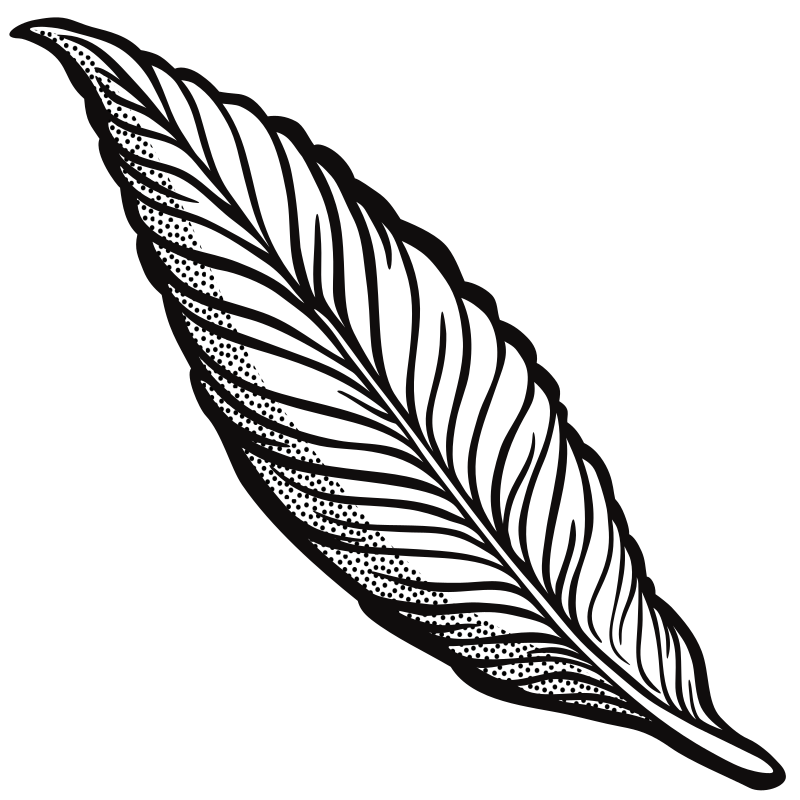 Line Art Feather : Clipart feather lineart