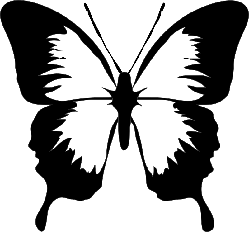 Architetto -- Farfalla 02 by francesco_rollandin - Black and white butterfly by Francesco 'Architetto' Rollandin. From OCAL 0.18 release.