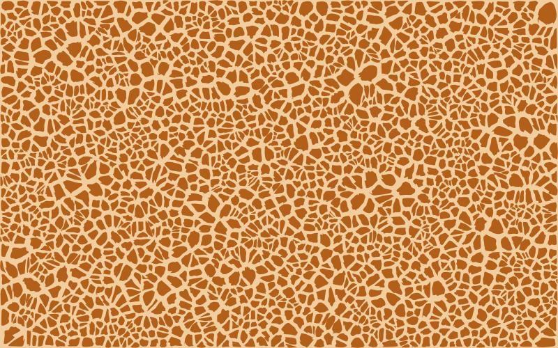 animal skin patterns - photo #18