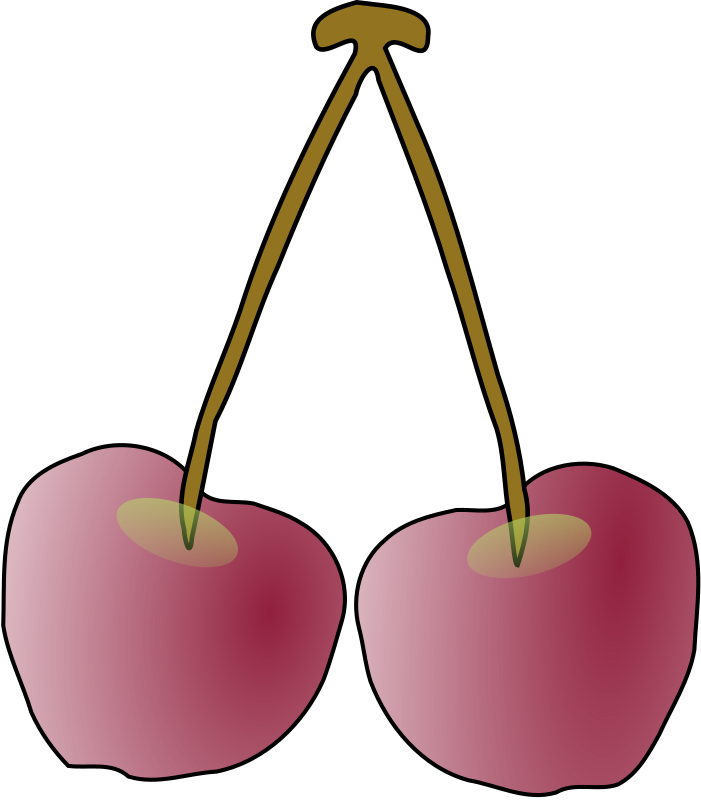 a pair of Oregon Columbia Gorge cherries by missiridia - A pair of cherries.