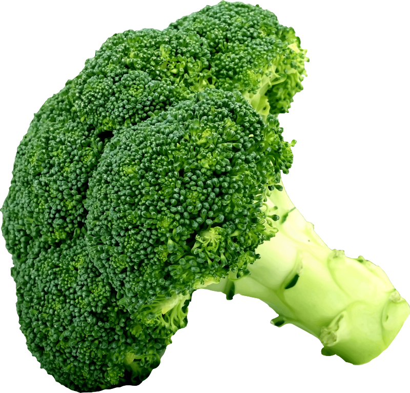 Clipart - Broccoli