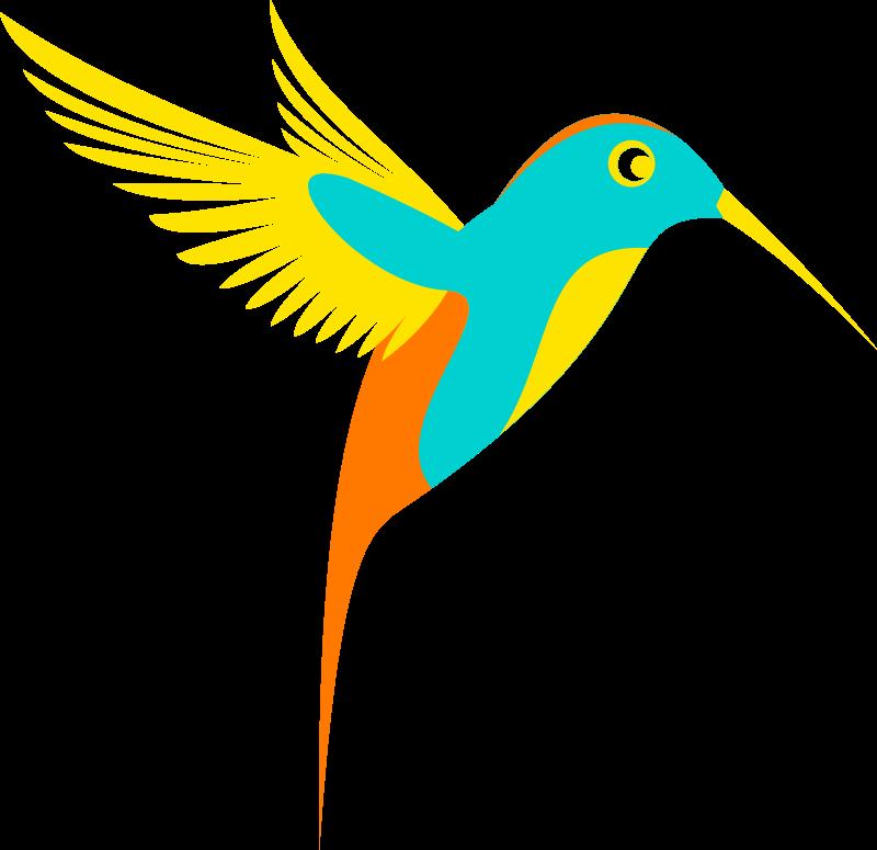 Clipart colibri single bird colorfull