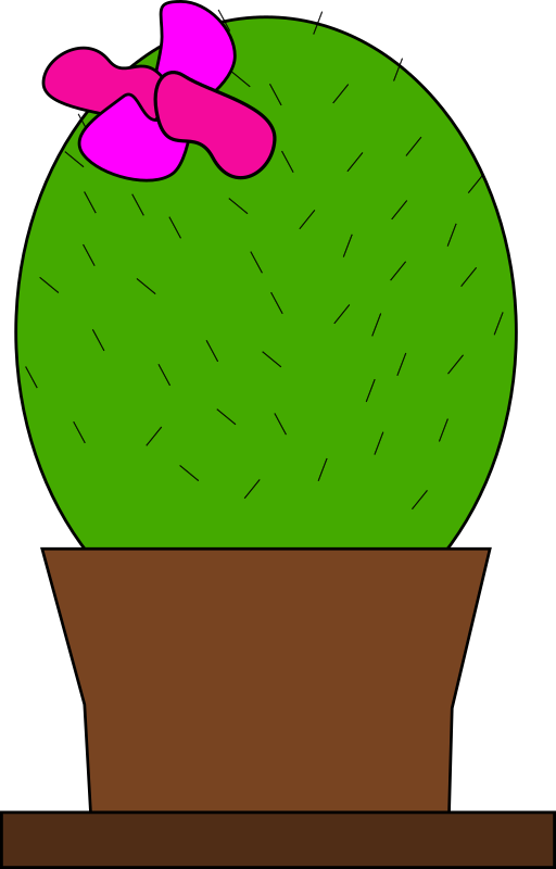 cactus by Machovka