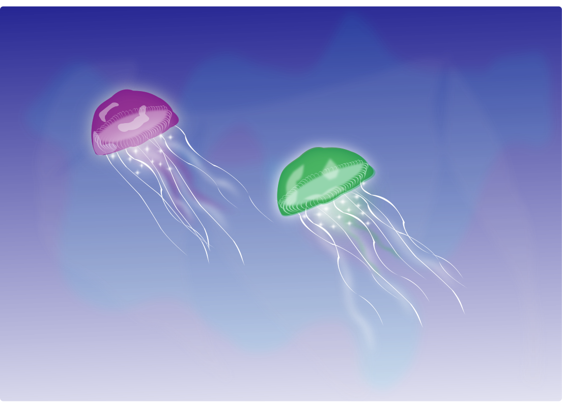 medusas (Two Jellyfishes) by silvia2k1