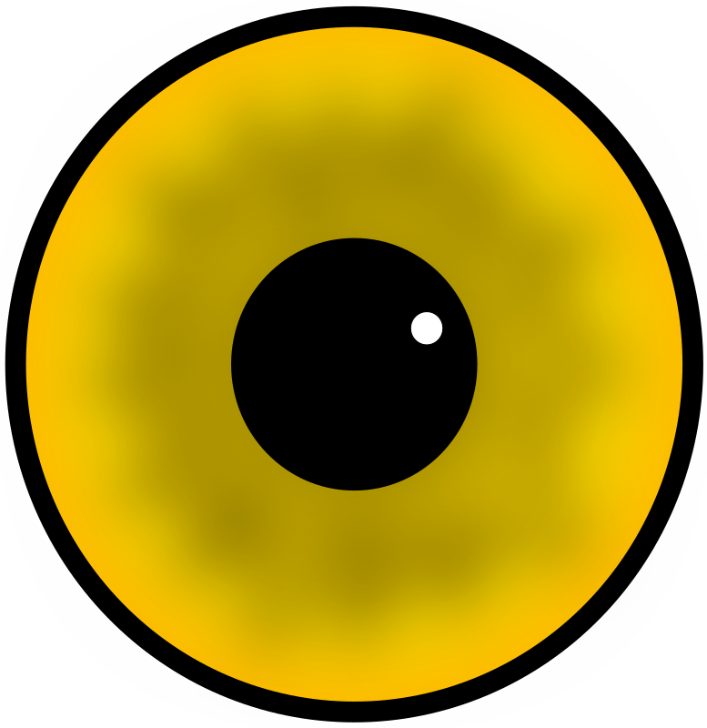 Yellow eye by laobc - A yellow eye.