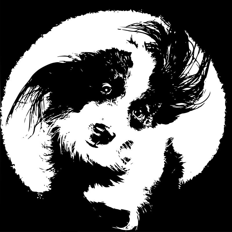 clipart wet dog - photo #14