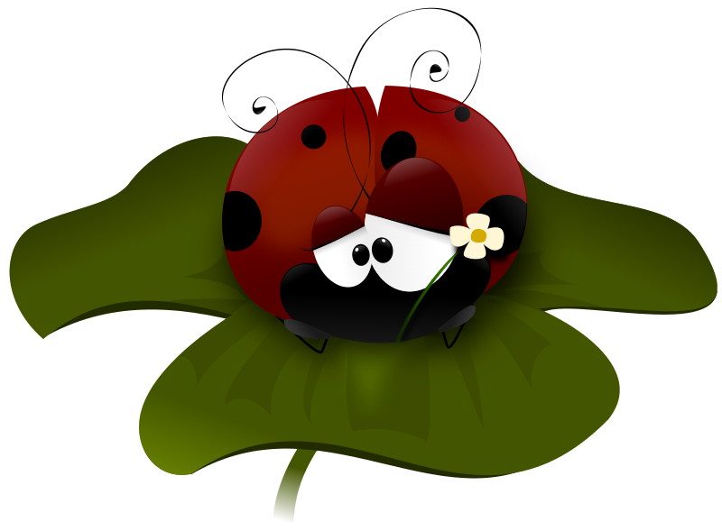 coccinella by perpaola