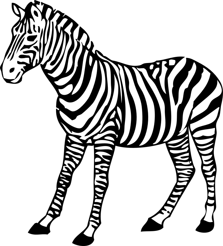 zebra by johnny_automatic - a zebra