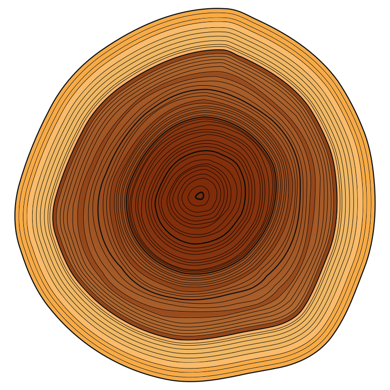 Annual Rings by usiiik - Annual Rings, Wood