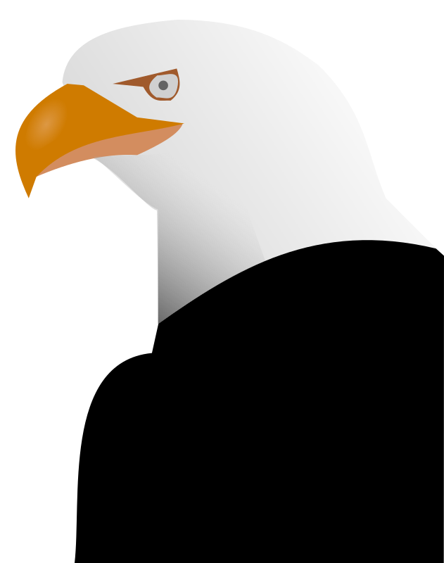 Eagle by nfroidure - A bald eagle shaded.