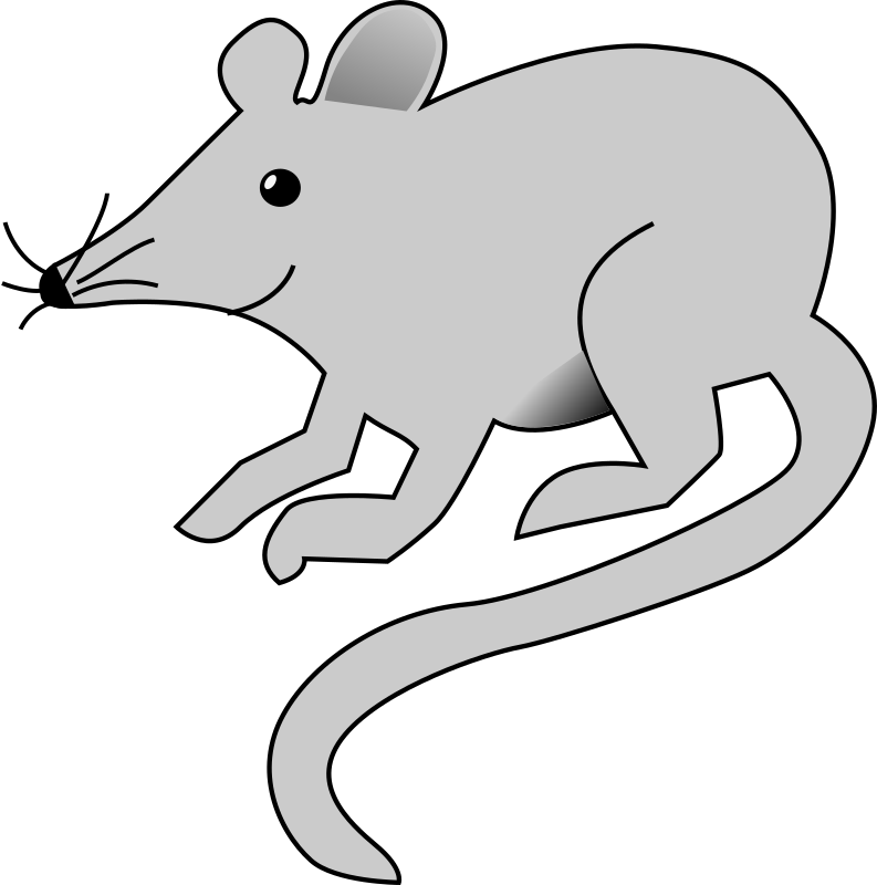 Mouse by da5id1 - Grey mouse.