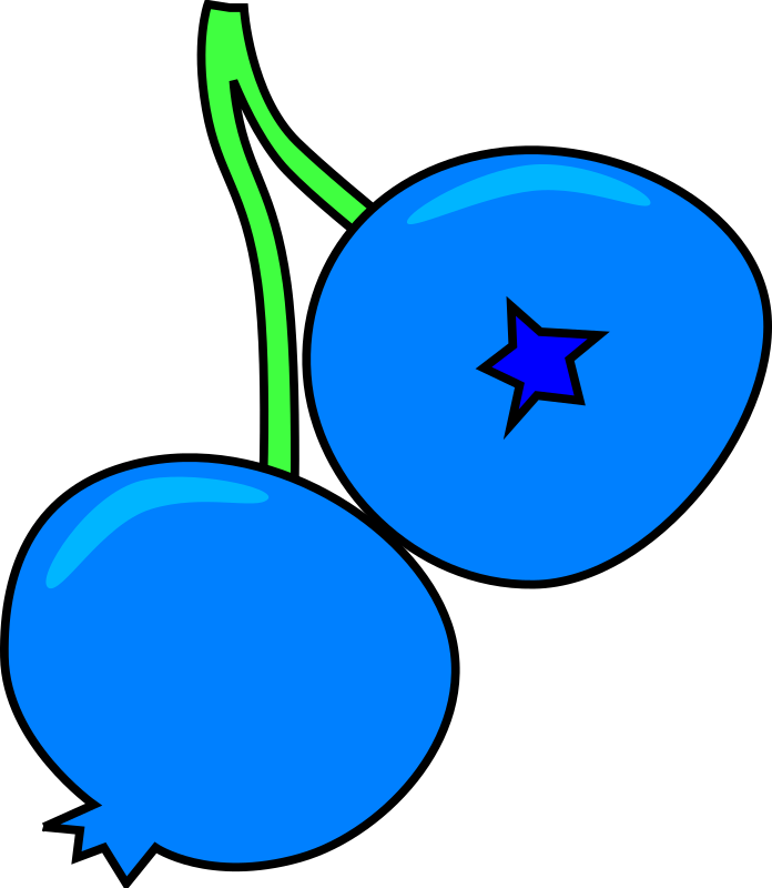 Blueberry by skarg - Two blueberries on a green stem
