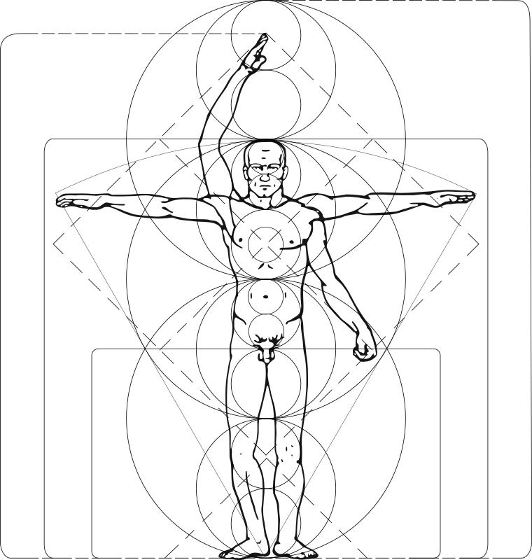Vitruvian Man by zeimusu - cleanup: bitmap removed, redundant paths removed, paths simplfied. (1600KB -> 65KB)