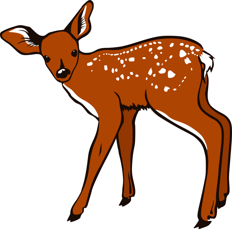 Fawn by freedo - A vectorized version of http://www.sbac.edu/~tpl/clipart/Animals%20and%20Insects/fawn%2002.jpg Thanks to David Stanley for permission!