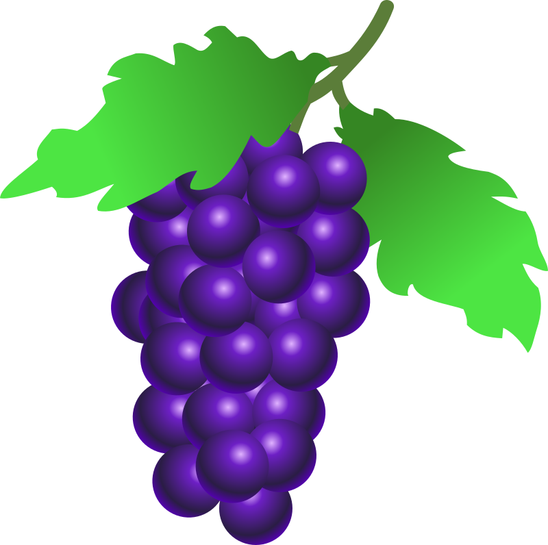grapes by stuuf - A bunch of grapes
