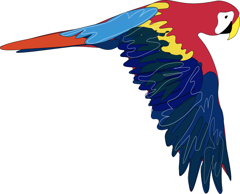 Guacamaya by emeza - A parrot flying.