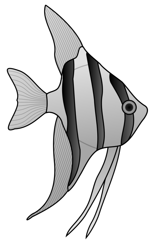 Angelfish by Anonymous - Originally posted by Jonathon Love from OCAL 0.18