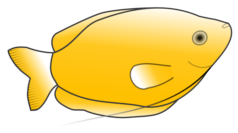 Yellow Gourami by Anonymous - Originally posted by Jonathon Love from OCAL 0.18