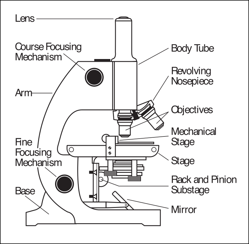 "Microscope parts labeled by rejon - This is clipart converted and broken apart that has been released into the public domain because the document says so, and its from NASA, a USA government agency. The publication is called ""The Brain in Space:""