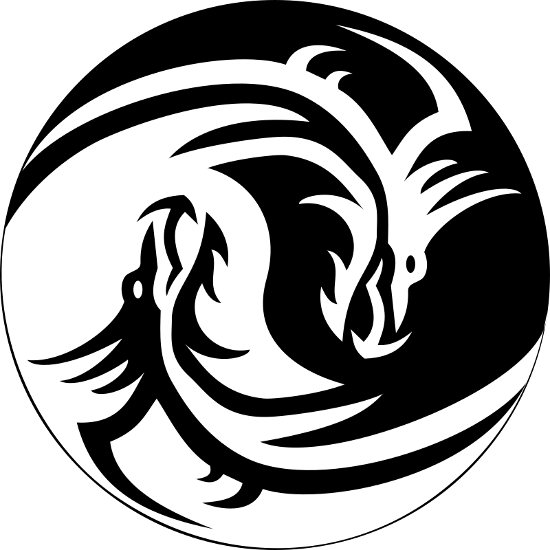 Dring and Drang by doctormo - A ying and Yang sign made with a white and black dragon.