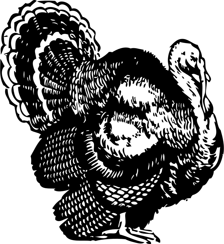 turkey by johnny_automatic - a black and white drawing of a turkey