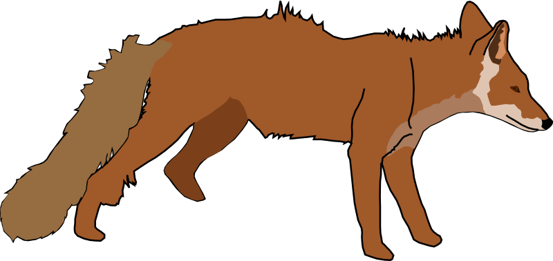 Fox by gingercoons - A reddish-brown fox.