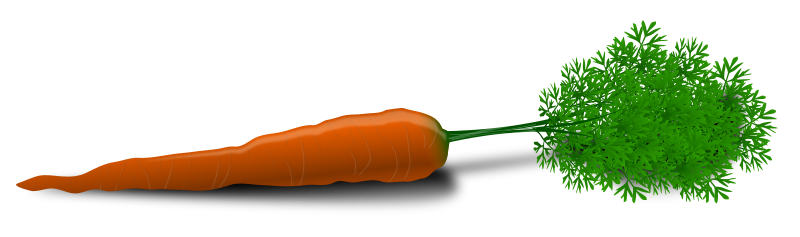 Carrot by Chrisdesign - Photorealistic carrot.