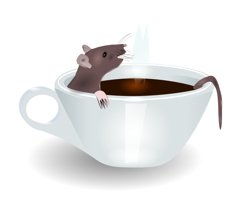 rat in coffee by redccshirt - rat in a cup of coffee