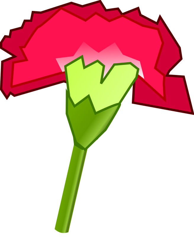 Cravo / Carnation by bsantos - Um cravo.
