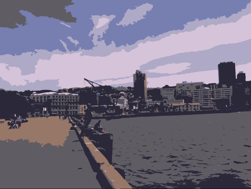 Wellington 2010-01-19 14.10.35