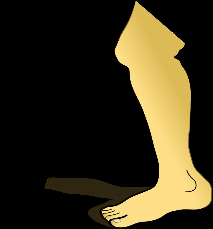 clipart leg