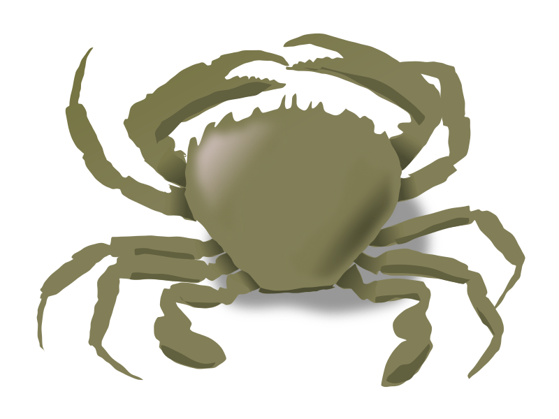the crab by addon - just a crab!