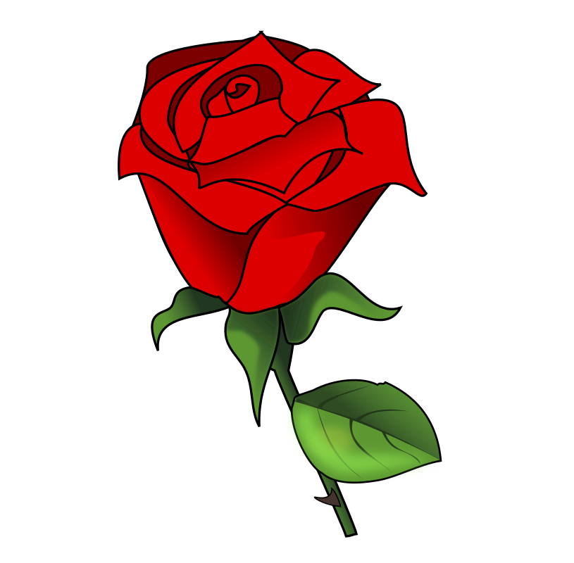 Red Rose by Dux Phoenix
