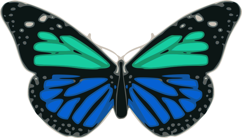 Butterfly 02 Turquoise Blue by palomaironique