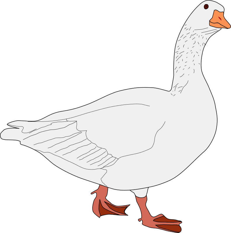 oca gris by system25 - This is a goose drawing.