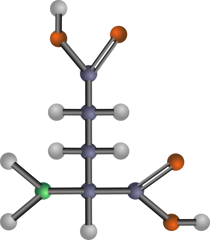 Glutamic acid (amino acid) by J_Alves - A ball-and-stick model structure of acidic (negatively-charged) amino acid glutamic acid (Glu, E). Carbon in blue-grey, oxygen in red, nitrogen in green, hydrogen in silver. Drawn in Inkscape.