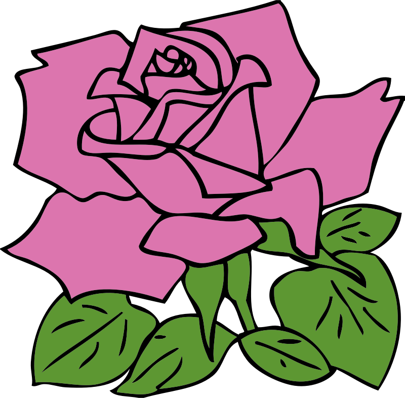 pink rose by johnny_automatic - a drawing of a rose from a U.S. Government Printing Office coloring page