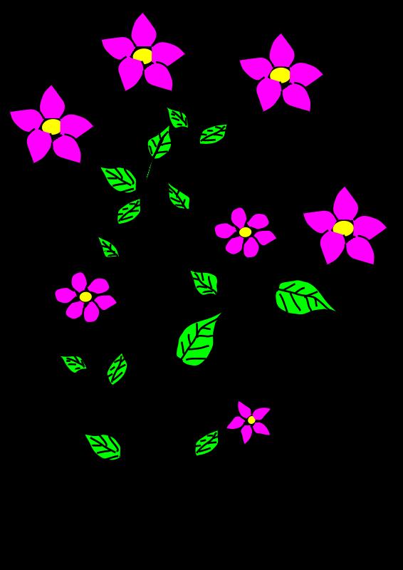 Flowers, Bujung, Tonrak by aungkarns - Flowers, Bujung, Tonrak