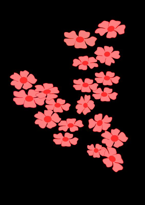 Ветка сакуры от Дарьи