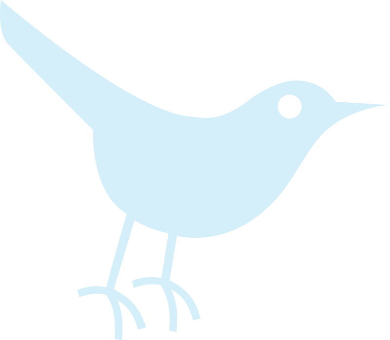 Bird Icon by Jonah Bron - Just the outline of one version of the Twitter Logo (traced from image)