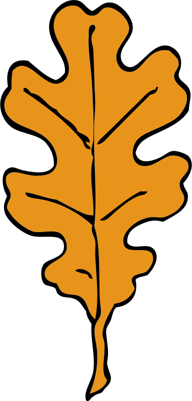 oak leaf by johnny_automatic - Line and Form by Walter Crane, 1914