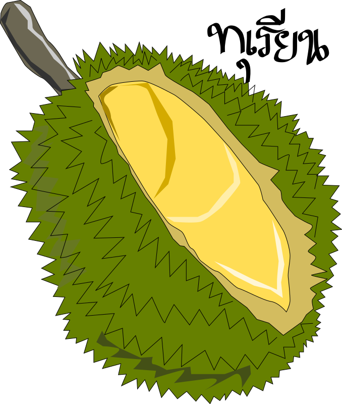 Durian,Thai Fruit by aungkarns