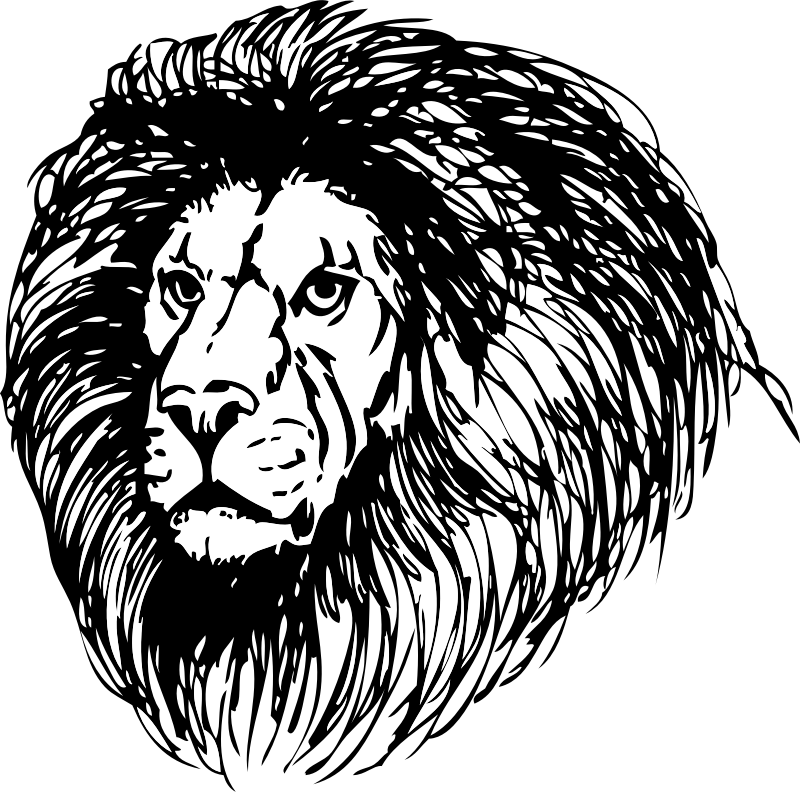 lion by johnny_automatic -